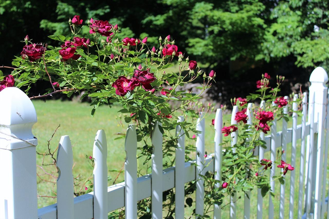 Installer une clôture pour sa maison : tout savoir de A à Z